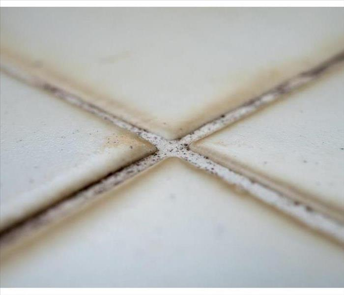 Macro white tiles with a grout mold.