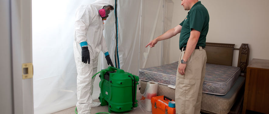 Billings, MT mold removal process